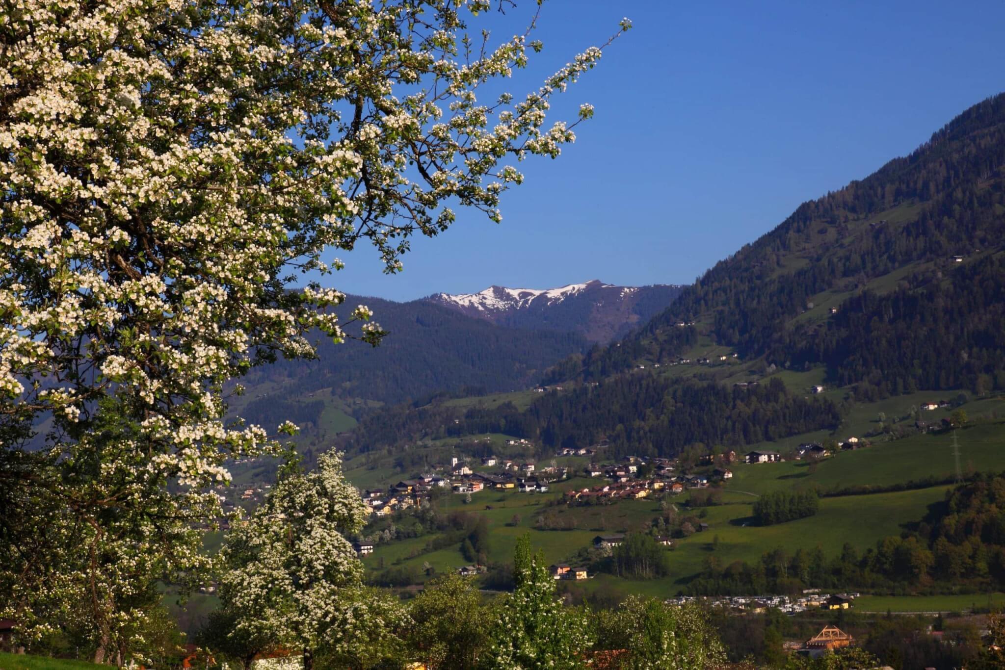 Patrozinium - Bittgang von Mühlbach nach St. Veit