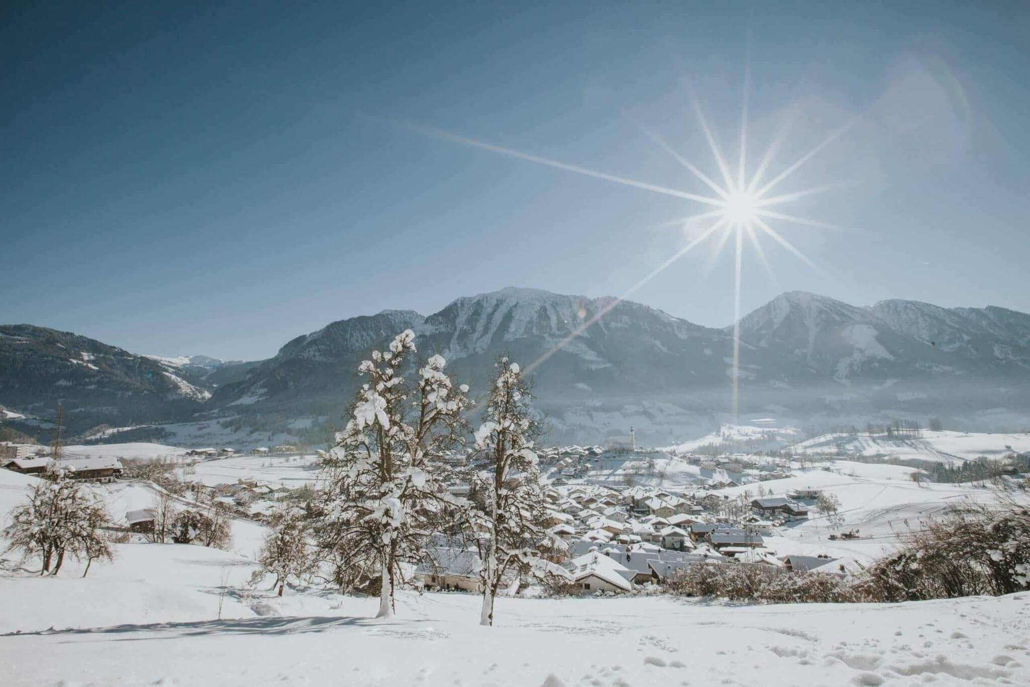 Winteranschießen & Jahreshauptversammlung